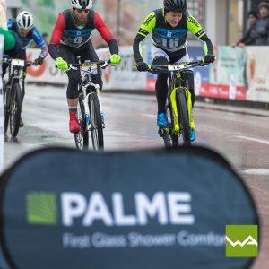 Pop out Banner - Palme